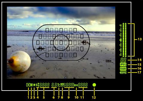 1dsIII-viewfinder